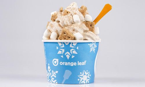 Veterans Day Deal From Orange Leaf Frozen Yogurt Honors Vets With Free Froyo